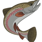 Lake Trout Fishing Saskatchewan