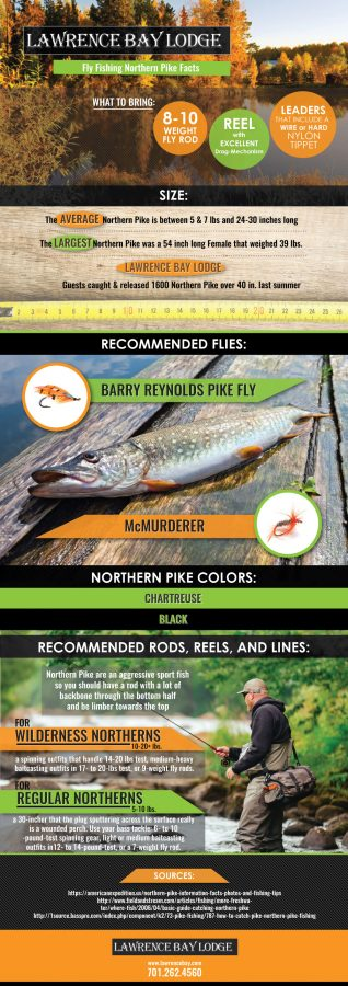 fly fishing northern pike facts