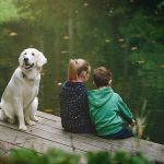 Tips for Fishing With Your Dog