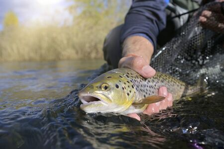 Catch and Release Fishing in Saskatchewan