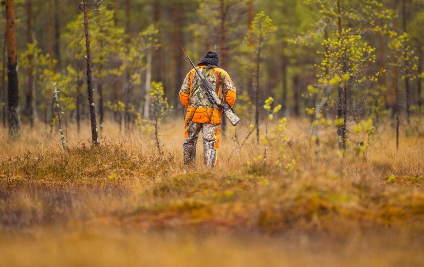 Guided Moose Hunting in Saskatchewan